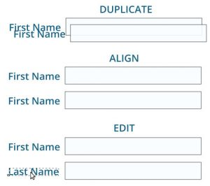 Duplicate - Align - Edit strategy of mocking up forms