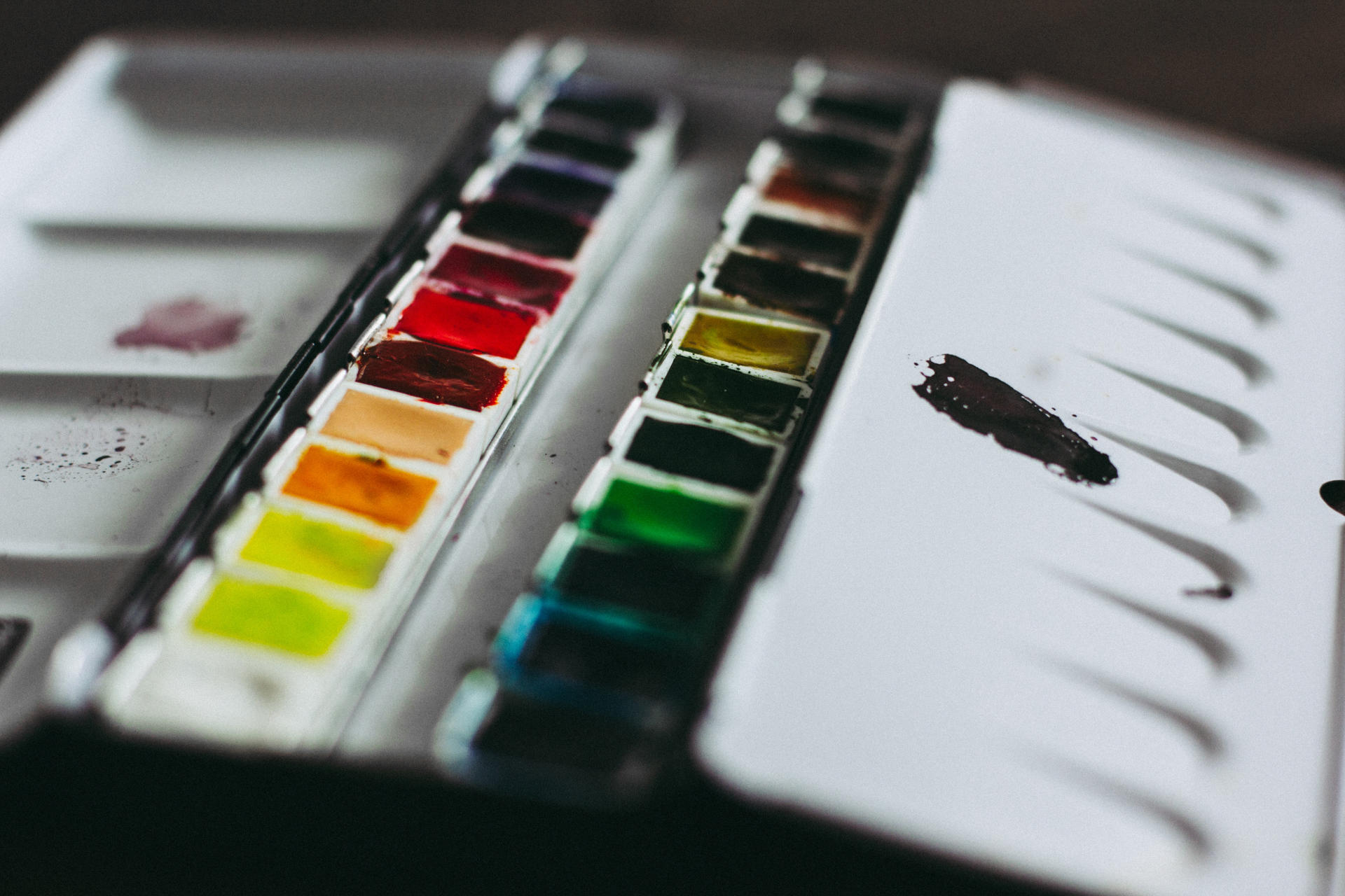 An artist's palette